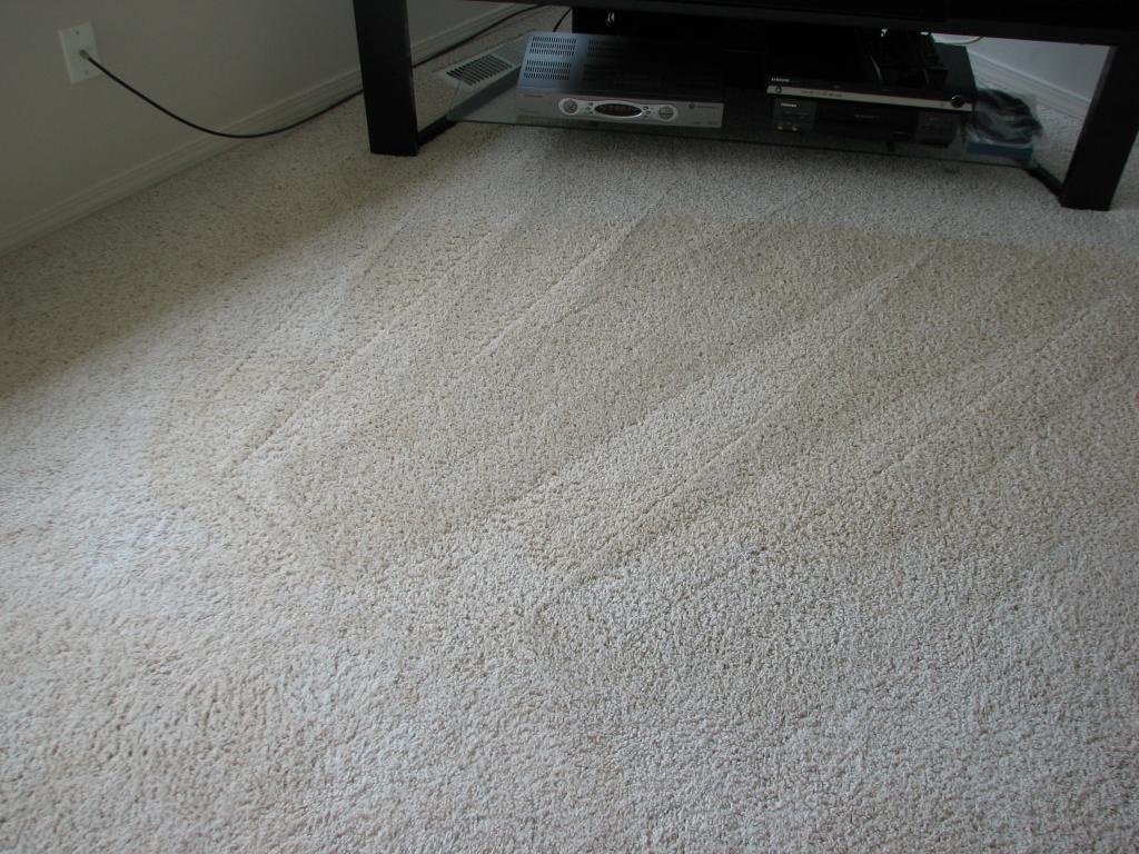 CleaningCleanCarpet 1