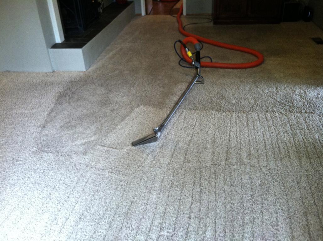 CleaningCleanCarpet 2